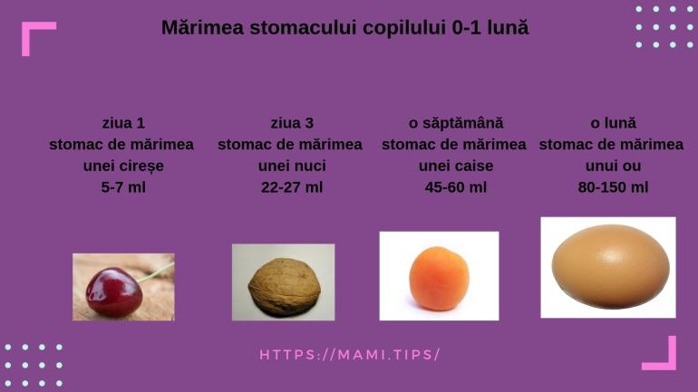 stomacul copilului 0-1 lună (2)